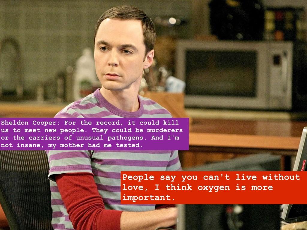 The Big Bang Theory 2007-
