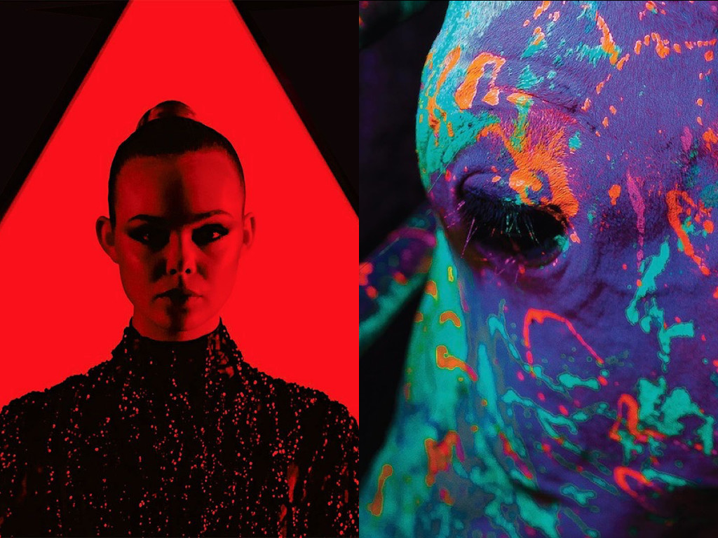 The Neon Demon 2016 vs. Neon Bull 2015
